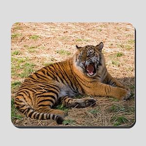 Roaring Tiger Mousepad