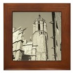 Gargoyles of La Catedral Framed Tile