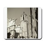 Gargoyles of La Catedral Mousepad