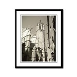 Gargoyles of La Catedral Framed Panel Print