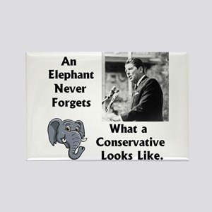 Elephant Never Forgets a Conservative Rectangle Ma