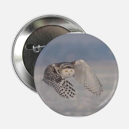"Snowy Owl 2.25"" Button"