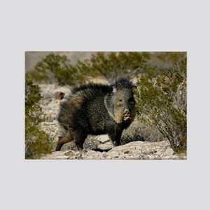Javelina Rectangle Magnet
