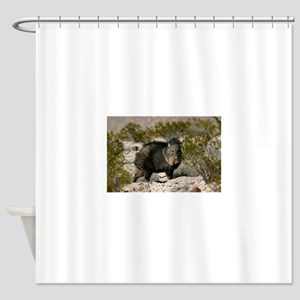 Javelina Shower Curtain