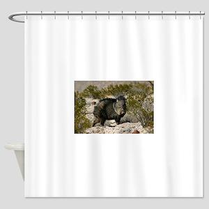 Javelina Shower Curtain