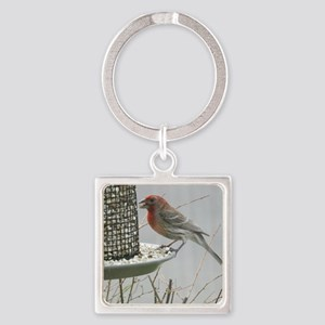 Purple Finch at the feeder Square Keychain