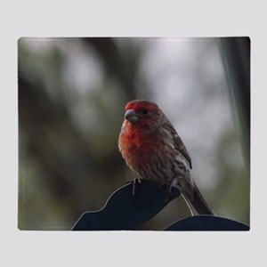 Purple Finch - 1 Throw Blanket