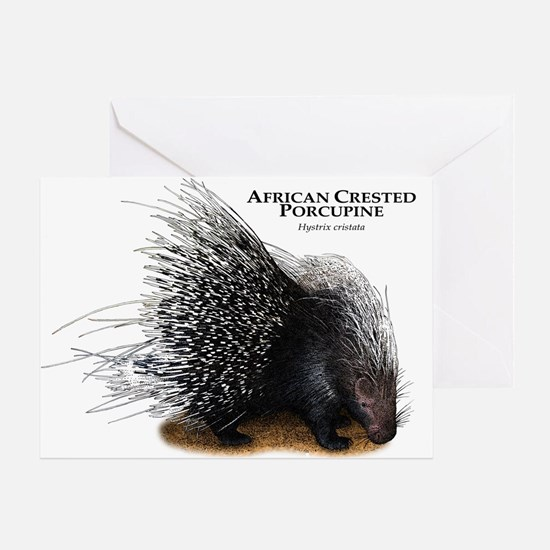 African Crested Porcupine Greeting Card