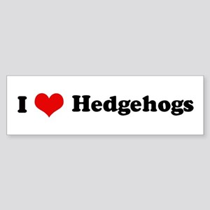 I Love Hedgehogs Bumper Sticker