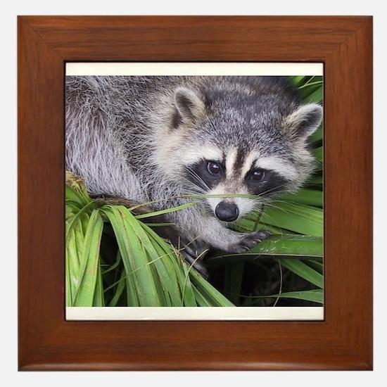 Masked Bandit Framed Tile