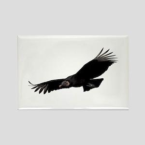 Black Vulture Rectangle Magnet