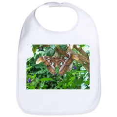 Giant Atlas Moth Bib