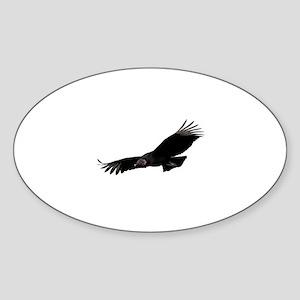 Black Vulture Sticker (Oval)
