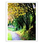 Tree-Lined Path Posters