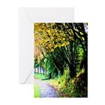 Tree-Lined Path Greeting Cards