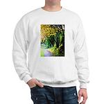 Tree-Lined Path Sweatshirt