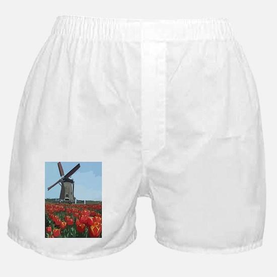 Cute Holland Boxer Shorts