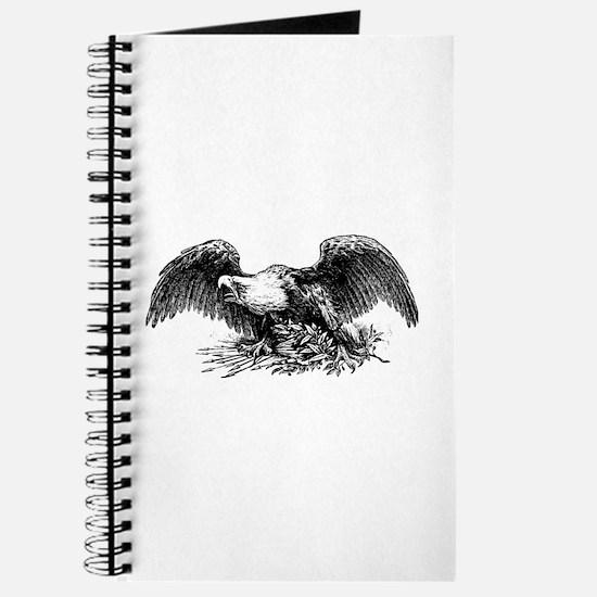 American War Eagle Journal