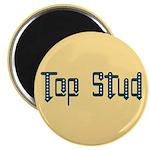 Top Stud Magnet