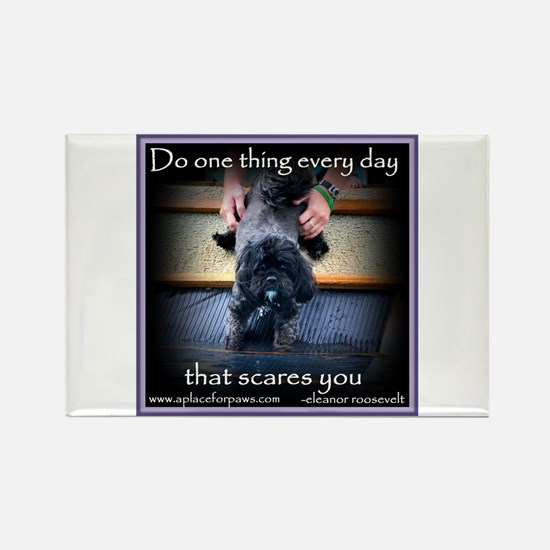 face your fears Magnets