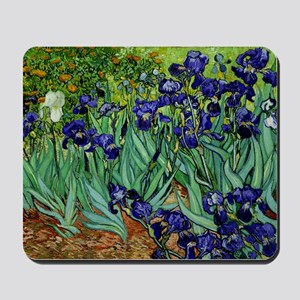 van gogh irises, st. remy Mousepad