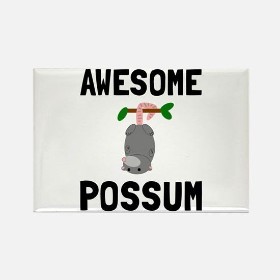 Awesome Possum Magnets