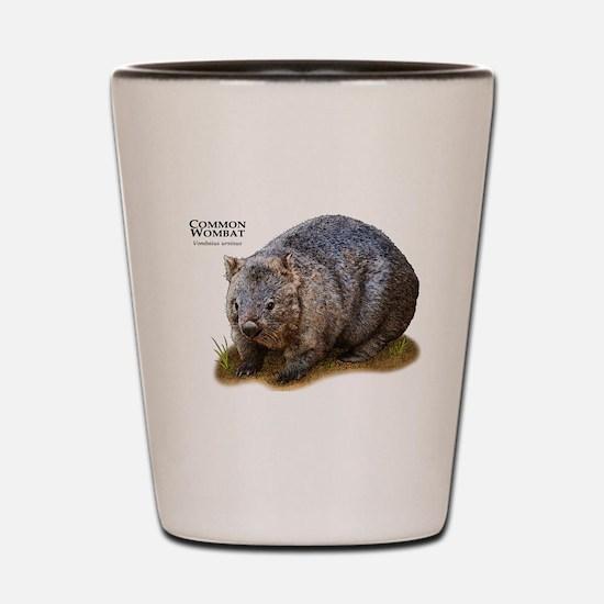 Common Wombat Shot Glass