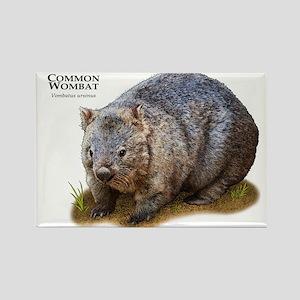 Common Wombat Rectangle Magnet