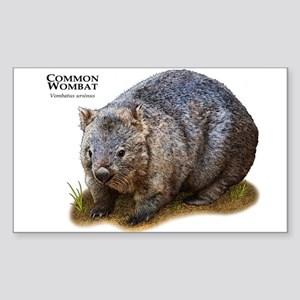Common Wombat Sticker (Rectangle)