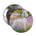 Whippet in Monet's Garden 2.25