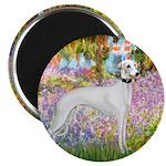 Whippet in Monet's Garden Magnet