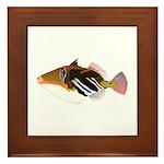 White-Banded Lagoon Triggerfish Framed Tile