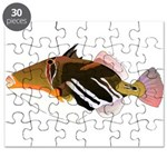 White-Banded Lagoon Triggerfish Puzzle