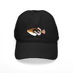 White-Banded LagoonTriggerfish C Baseball Hat