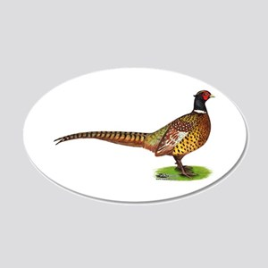 Proud Ringneck Pheasant 20x12 Oval Wall Decal