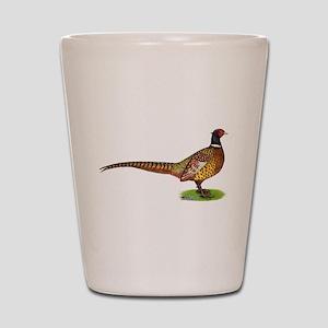 Proud Ringneck Pheasant Shot Glass