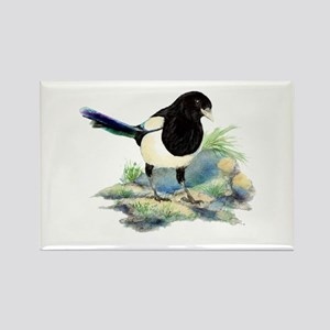 Watercolor Curious Magpie Bird Nature Art Magnets