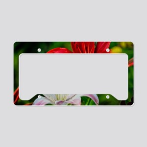 Red and White Lilies License Plate Holder