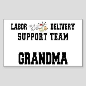 Labor Delivery Support Team Grandma Sticker (Recta