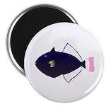 Pinktail Triggerfish aka Paletail Durgon Magnets