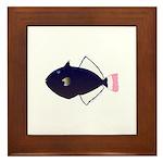 Pinktail Triggerfish aka Paletail Durgon Framed Ti