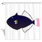 Pinktail Triggerfish aka Paletail Durgon Shower Cu