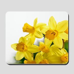 Daffodils Style Mousepad