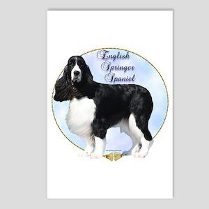 Springer Spaniel Portrait Postcards (Package of 8)