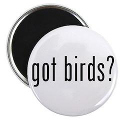 got birds? Magnet
