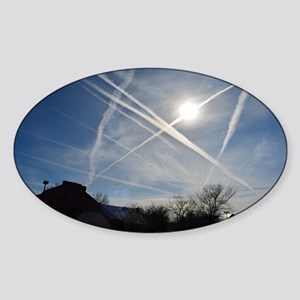 Chemtrail Grid Sticker (Oval)