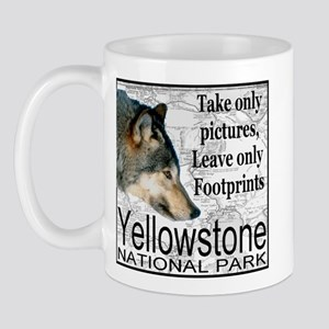 Take Only Pictures, Leave Onl Mug