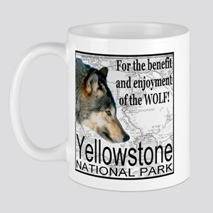 For the benefit and enjoyment Mug