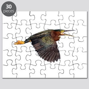 Green Heron Puzzle