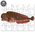 Pacific Wolf Eel tc Puzzle